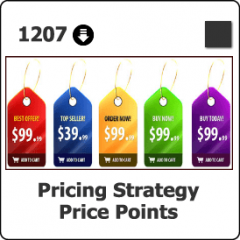 1207 Pricing Strategy & Price Points